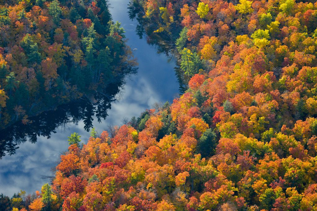 Fall Colours Aerial Photography